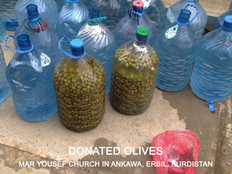 Donated olives